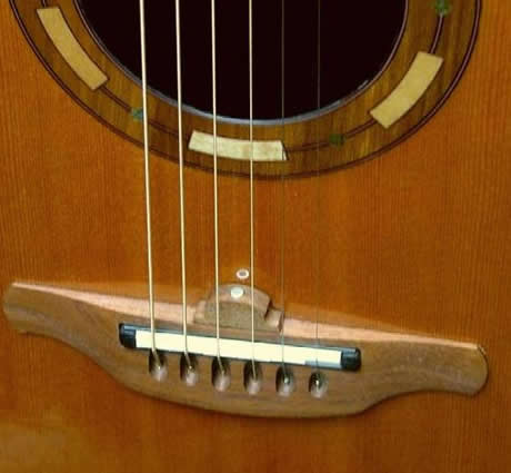 ovation 1995 collectors Mikrofon